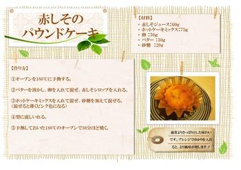 レシピフォーム(赤しそのパウンドケーキ).jpg
