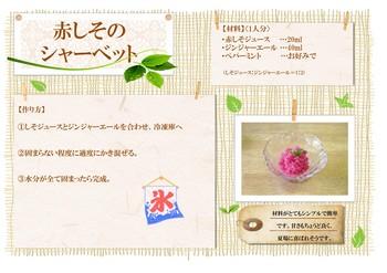 公開レシピ(赤しそのシャーベット).jpg