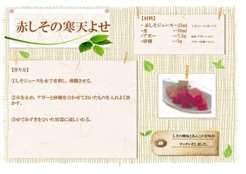 公開レシピ(赤しその寒天よせ).jpg