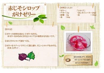 公開レシピ(赤しそシロップがけゼリー).jpg