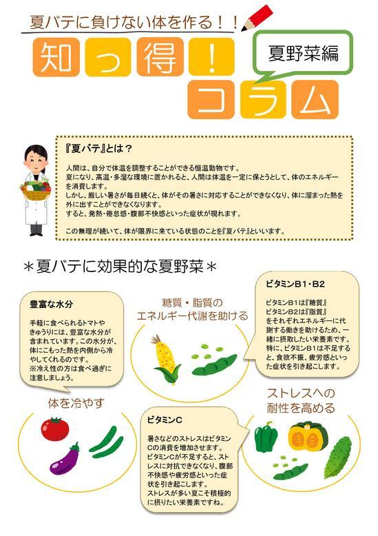 夏だからこそ御飯が進む一品 コラム(夏野菜).jpg