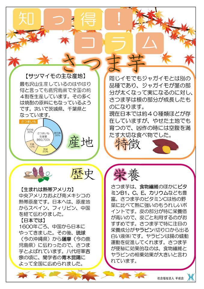 11月栄養コラム  さつま芋①.jpg