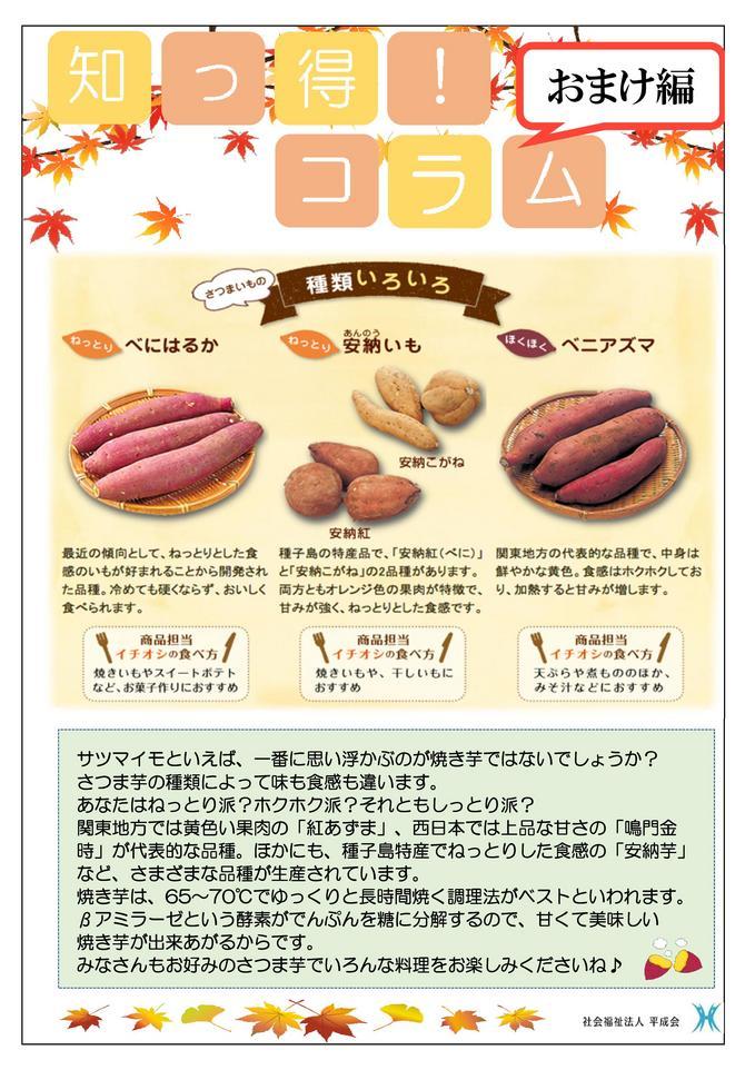 11月栄養コラム  さつま芋.jpg