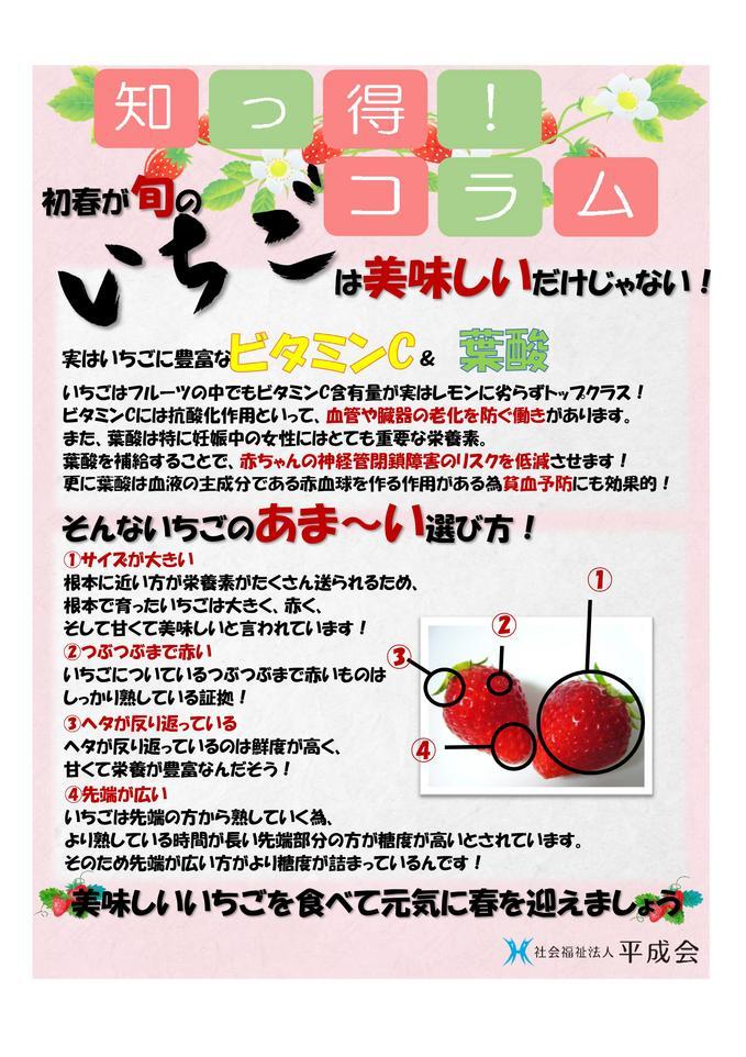 3月栄養コラム  いちご.jpg