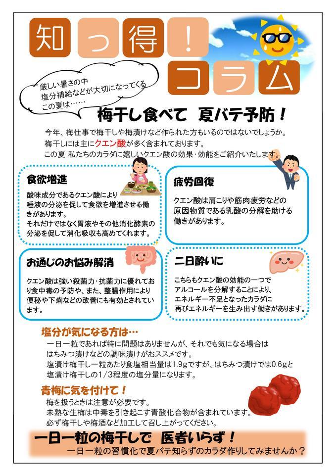 栄養コラム7月【梅干し】.jpg